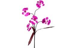 Διακοσμητικό λουλούδι ορχιδέα με 5 άνθη χρ. μωβ σκούρο-λευκό