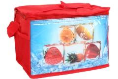 Τσάντα ψυγείο ισοθερμική 25Χ16Χ19 εκ. σχ. ΦΡΟΥΤΑ