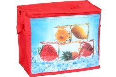 Τσάντα ψυγείο ισοθερμική 32Χ18Χ26 εκ. 13 λίτρα σχ. ΠΑΓΑΚΙΑ - OEM